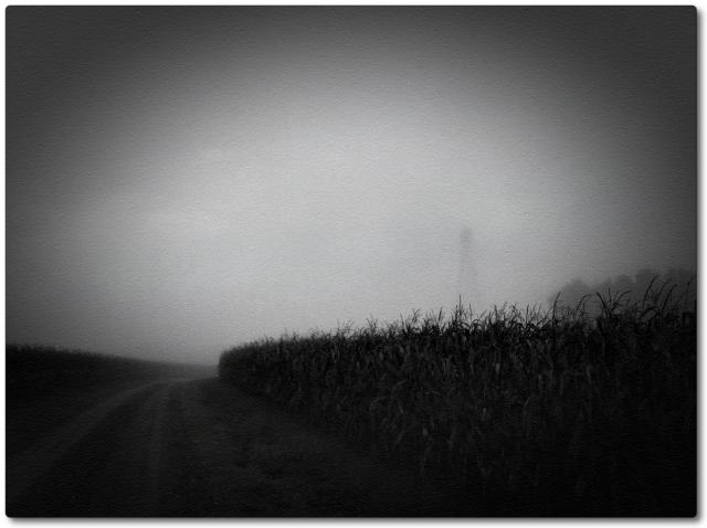 Foggy Day C+ set Sept 2013 photo 2