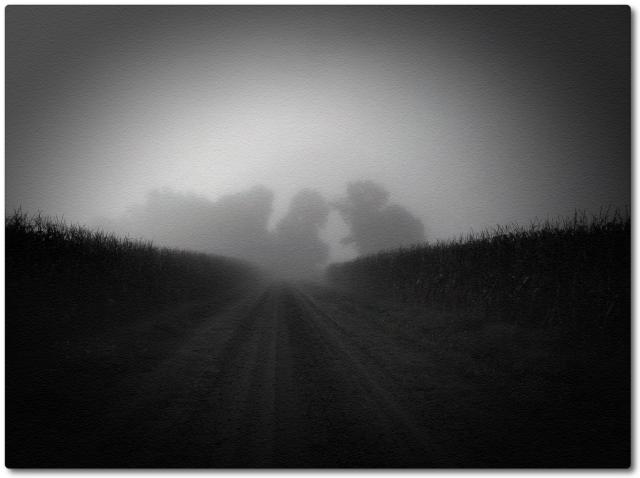 Foggy Day C+ set Sept 2013 photo 3