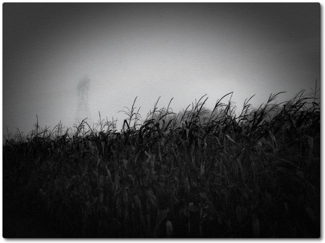 Foggy Day C+ set Sept 2013 photo5