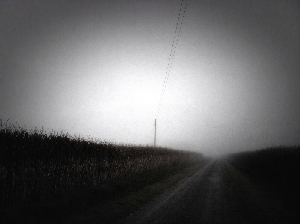 Foggy Road 2 (September 2013)