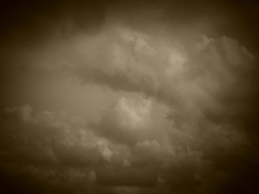 Holga batch 1.5 wp flickr L