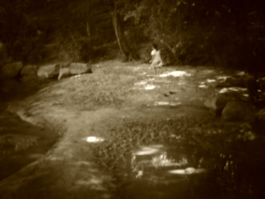 Holga Jones Bridge Park 1.1 May 8 2016 Flickr L