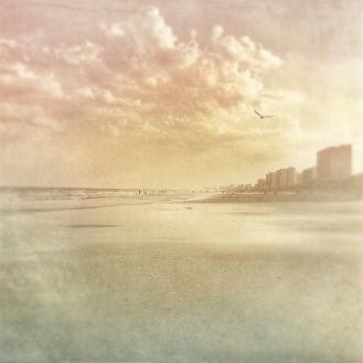 Beach Photos 2016 3