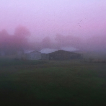 barn on a misty morning