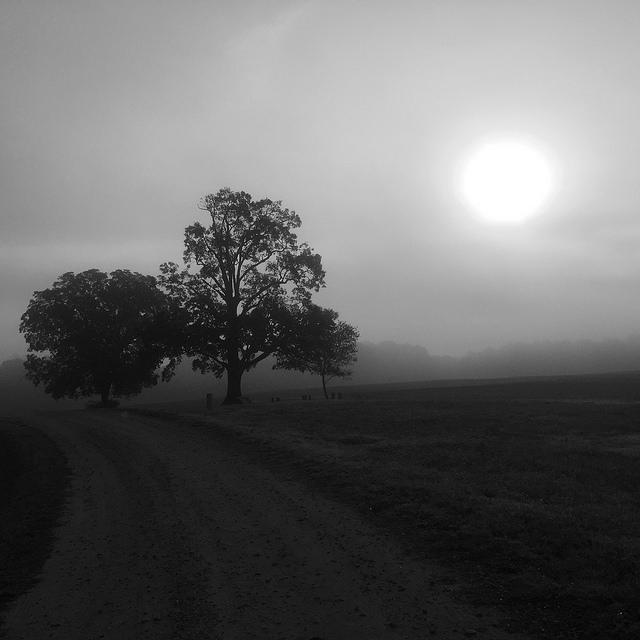 november-2-2016-sun-fog-2-flickrm
