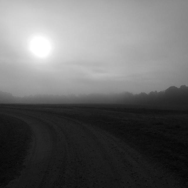 november-2-2016-sun-fog-3-flickrm